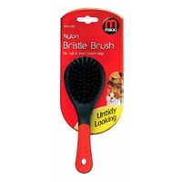 Mikki Nylon Bristle Brush for Cats and Short Coated Dogs big image