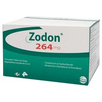 Zodon 264mg Chewable Tablets for Dogs big image