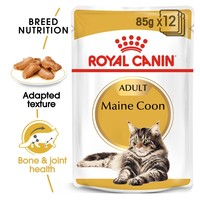 Royal Canin Maine Coon Pouches in Gravy Adult Cat Food big image
