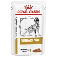 Royal Canin Urinary S/O Pouches for Dogs big image