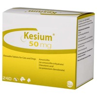 Kesium 50mg Chewable Tablets for Cats and Dogs big image