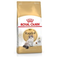 Royal Canin Ragdoll Adult Cat Food big image