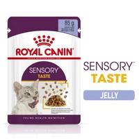 Royal Canin Sensory Taste Wet Food Pouches in Jelly for Cats big image