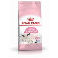 Royal Canin First Age Mother & Babycat Kitten Food big image