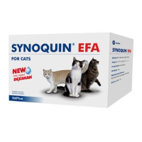 Synoquin EFA Joint Supplement Capsules for Cats (Pack of 90) big image