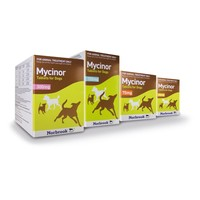 Mycinor 300mg Tablets for Dogs big image