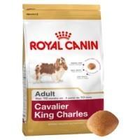 Royal Canin Cavalier King Charles Adult big image
