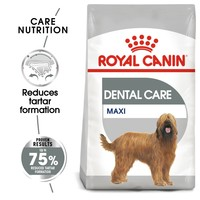 Royal Canin Maxi Dental Care Dry Dog Food big image