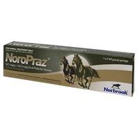 NoroPraz Horse Wormer big image