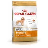 Royal Canin Poodle Adult big image