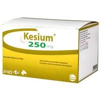 Kesium 250mg Chewable Tablets for Dogs big image