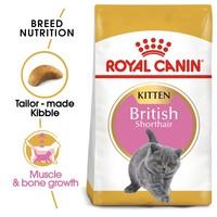 Royal Canin British Shorthair Kitten Food 2kg big image