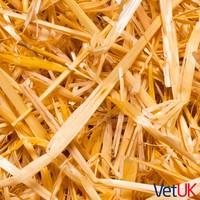 VetUK Barley Straw 2kg big image