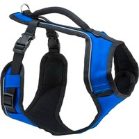 EasySport Harness for Dogs (Blue) big image