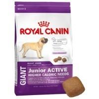 Royal Canin Giant Junior Active 15kg big image
