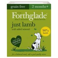 Forthglade Just Lamb Grain Free Dog Food big image