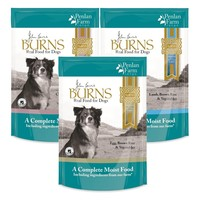 Burns Penlan Wet Dog Food Pouches (Variety) big image