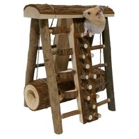 Rosewood Small Animal Activity Assault Course big image