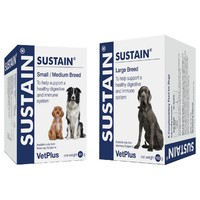Sustain Supplement for Dogs big image