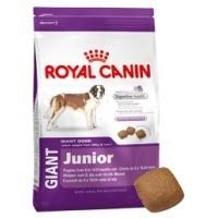 Royal Canin Giant Junior big image