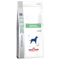 Royal Canin Dental Dry Food for Dogs 6kg big image