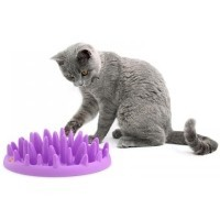 Company of Animals Catch Interactive Feeder for Cats big image