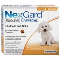 Nexgard for Small Dogs 11.3mg (6 Pack) big image