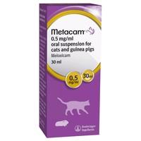 Metacam Oral Suspension for Cats and Guinea Pigs big image