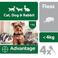Advantage 40 Flea Treatment for Small Cats / Small Dogs / Rabbits 4 Pipettes big image