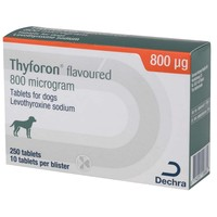 Thyforon 800mcg Flavoured Tablets for Dogs big image
