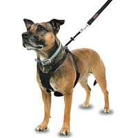 Company of Animals Non-Pull Dog Harness big image