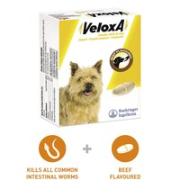 Veloxa Chewable Tablets for Dogs big image