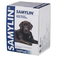 Samylin Liver Supplement (30 Sachets) big image