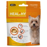 VetIQ Healthy Treats Skin and Coat for Dogs and Puppies 70g big image