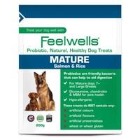 Feelwells Life Stage Probiotic Mature Dog Treats (Salmon & Rice) big image