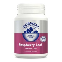 Dorwest Raspberry Leaf Tablets for Dogs and Cats big image