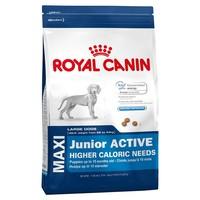 Royal Canin Maxi Junior Active 15kg big image