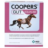 Coopers Gut Equalise for Horses (5 x 20g Syringes) big image
