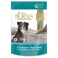 Burns Penlan Wet Dog Food Pouches (Lamb) big image