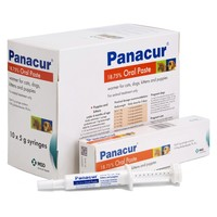 Panacur 18.75% Oral Paste for Cats and Dogs 5g big image