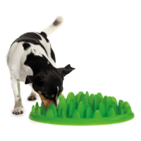 Company Of Animals Green Interactive Feeder for Dogs big image
