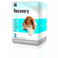 Supreme Science Recovery 10 x 20g big image