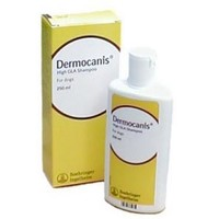 Dermocanis High GLA Shampoo 250ml Bottle big image