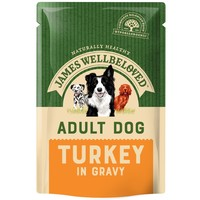 James Wellbeloved Adult Dog Wet Food Pouches (Turkey & Rice) big image
