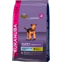 Eukanuba Puppy Junior Large Breed 3kg big image