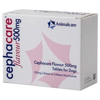 Cephacare Flavoured 500mg Tablets for Cats and Dogs big image