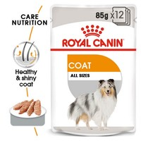 Royal Canin Coat Care Wet Dog Food Pouches big image