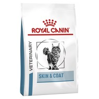 Royal Canin Skin & Coat Dry Food for Cats big image