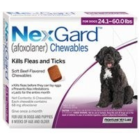 Nexgard for Large Dogs 68mg (3 Pack) big image