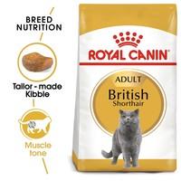 Royal Canin British Shorthair Adult Cat Food big image